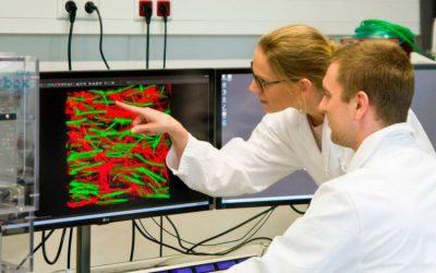 An injectable navigation system for nerve cells